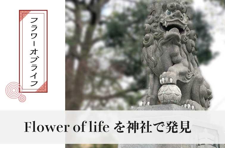 フラワーオブライフ  神社